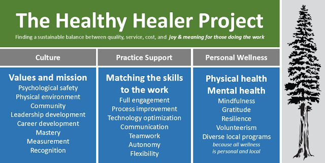Healthy Healer Project Overview